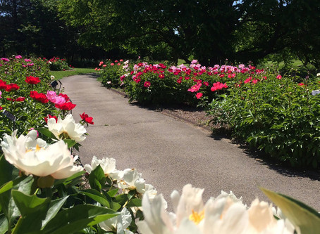 Quick Guide to Boerner Botanical Gardens