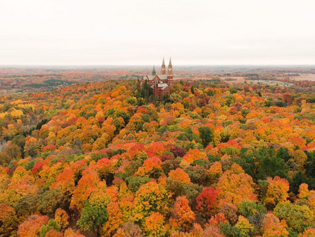 Where To See The Changing Leaves In 2020