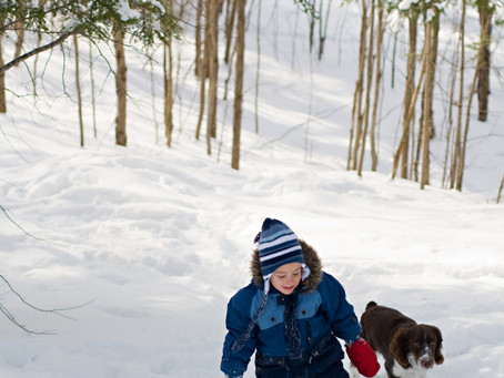 Where to go snowshoeing around Milwaukee