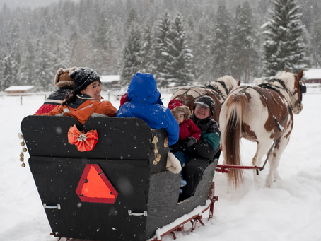 It's Lovely Weather for a Sleigh Ride in Southeastern Wisconsin