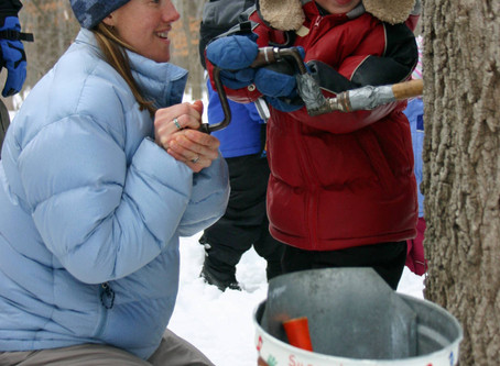 Maple sugaring events for kids and families 2018