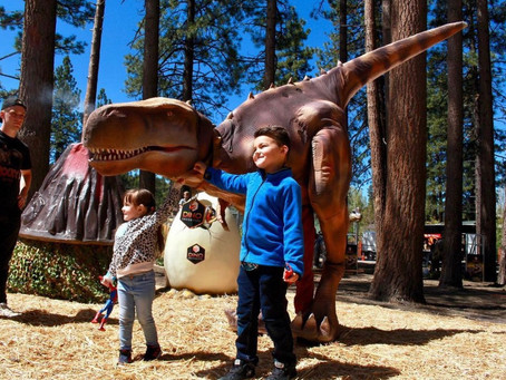 July 2021: Top Things To Do With Kids
