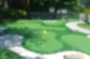 synthetic turf golf court.jpeg