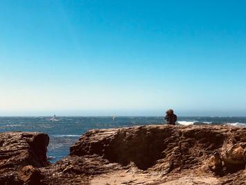 N. California Coast, 2019