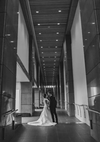 Wellington Wedding Photos 195.jpg