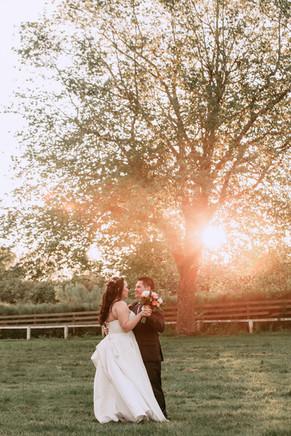 Awapuni Wedding Photos 236.jpg