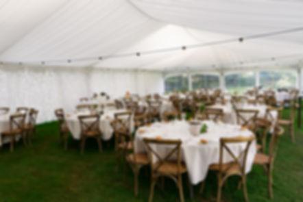 Wharerata Wedding Photos _243.jpg