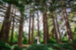 Wharerata Wedding Photos _224.jpg