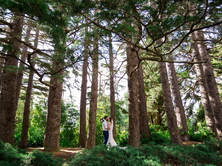 Manawatu Wedding Photographer | Wharerata, Massey University | Brooke & Mike