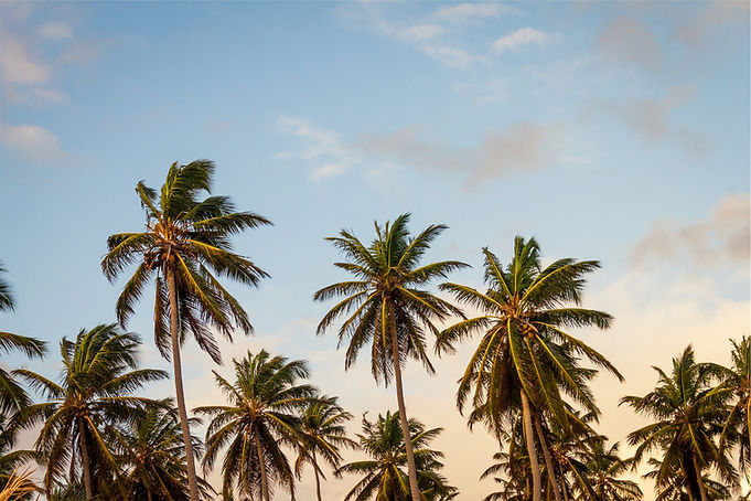 5 Sterne Hotels Palma de Mallorca Angebote