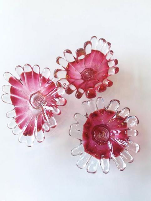 anemone dish