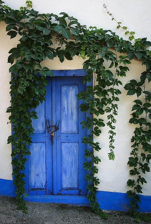 Wine Leaves Door