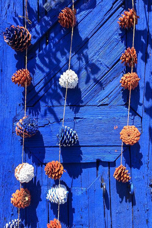 Pine Cone Blue Door