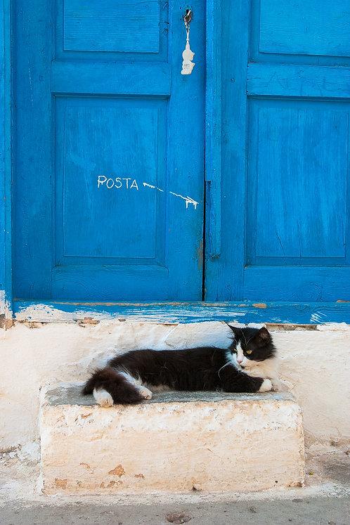 "Postcard ""Kaş, Posta cat"""