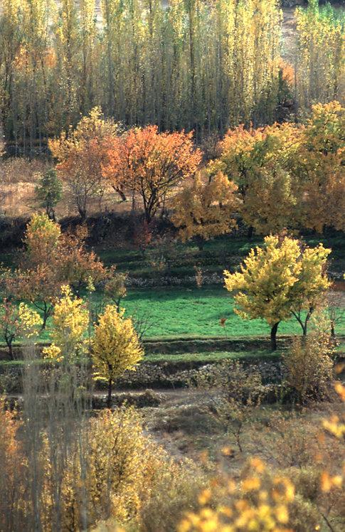 Seven Lakes Bolu, Turkey