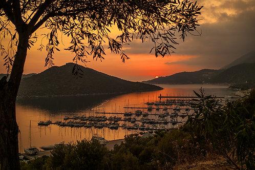 """Postcard """"New Marina"""""""