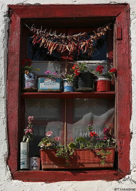 Semra's Kitchen Window