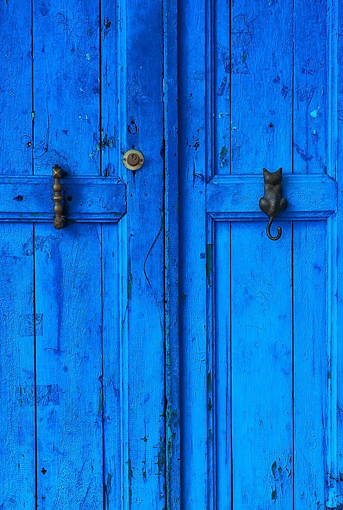 Cat Knocker Door