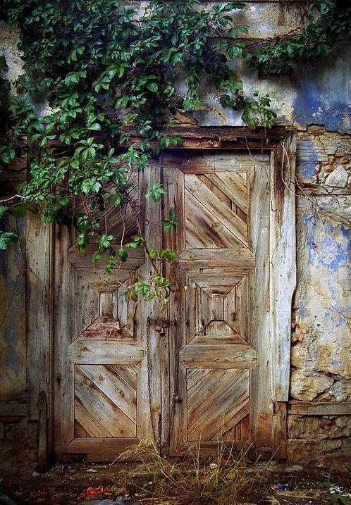 Antique Deserted Door