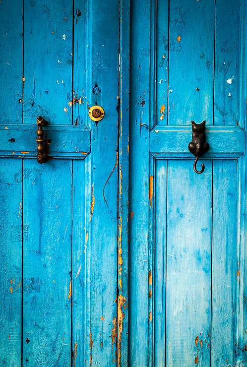 Blue Door Cat Handle