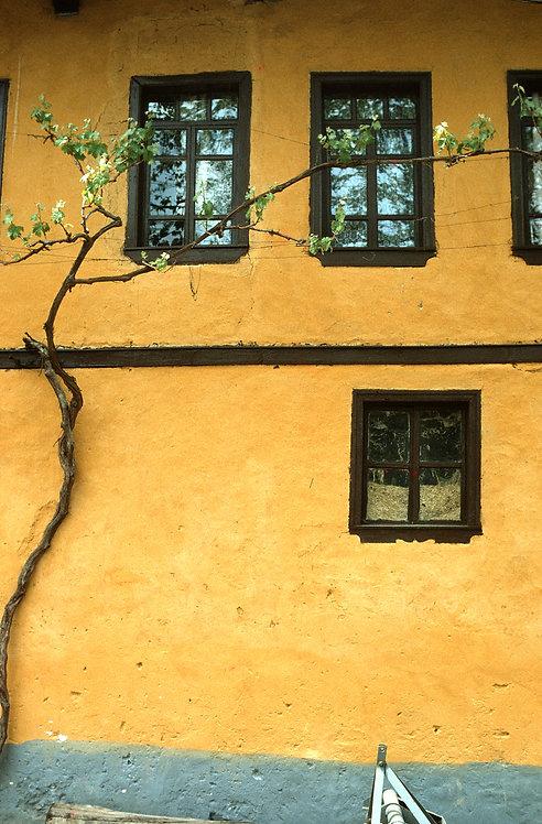Ottoman Yellow Wall Cumalıkızık Village