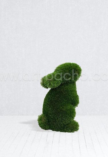 Baby Rabbit Standing - 0.42 x 0.24 x 0.40 m