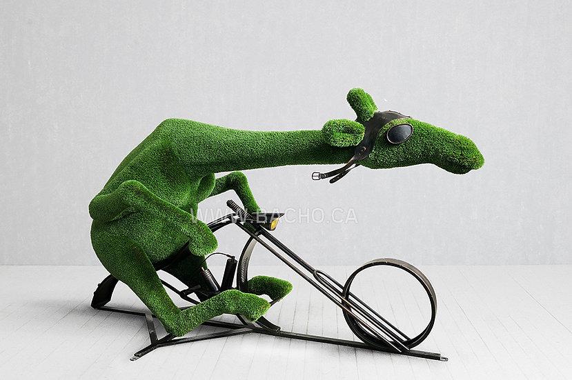 Giraffe on a bike - 2.15 x 3.80 x 1.70