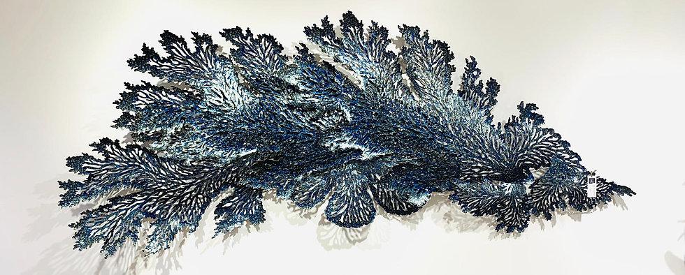Coral XL - Blue