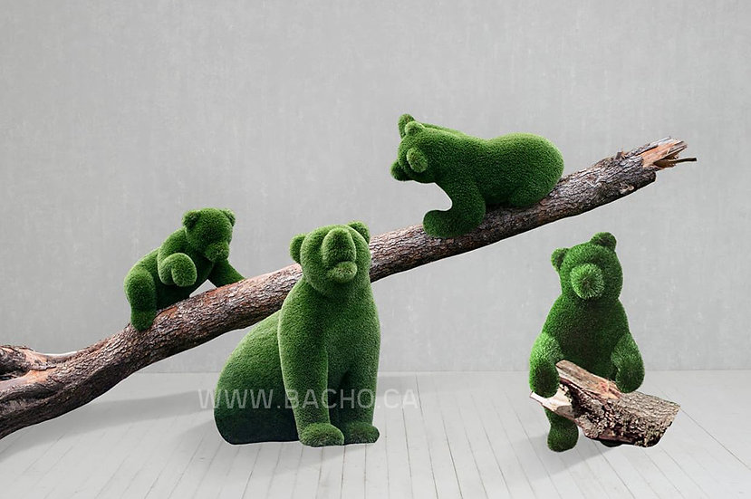 Bears in the forest - SET