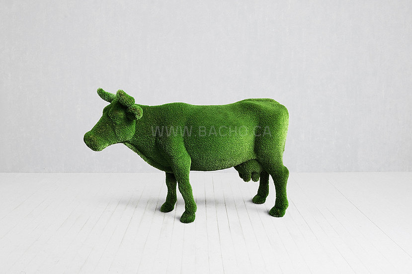 Cow - 1.7 x 2.9 x 0.9 m