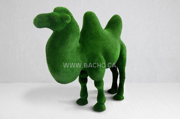 Camel two Humped - 2.5 x 2.85 x 1.1 m