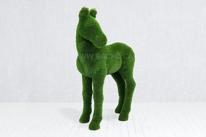 Foal - 1.5 x 1.2 x 0.6 m