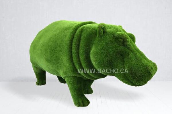Hippo - 1.7 x 3.5 x 1.2 m