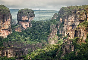 Amazon rainforest with rock formations