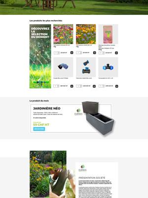 site-everdis.jpg