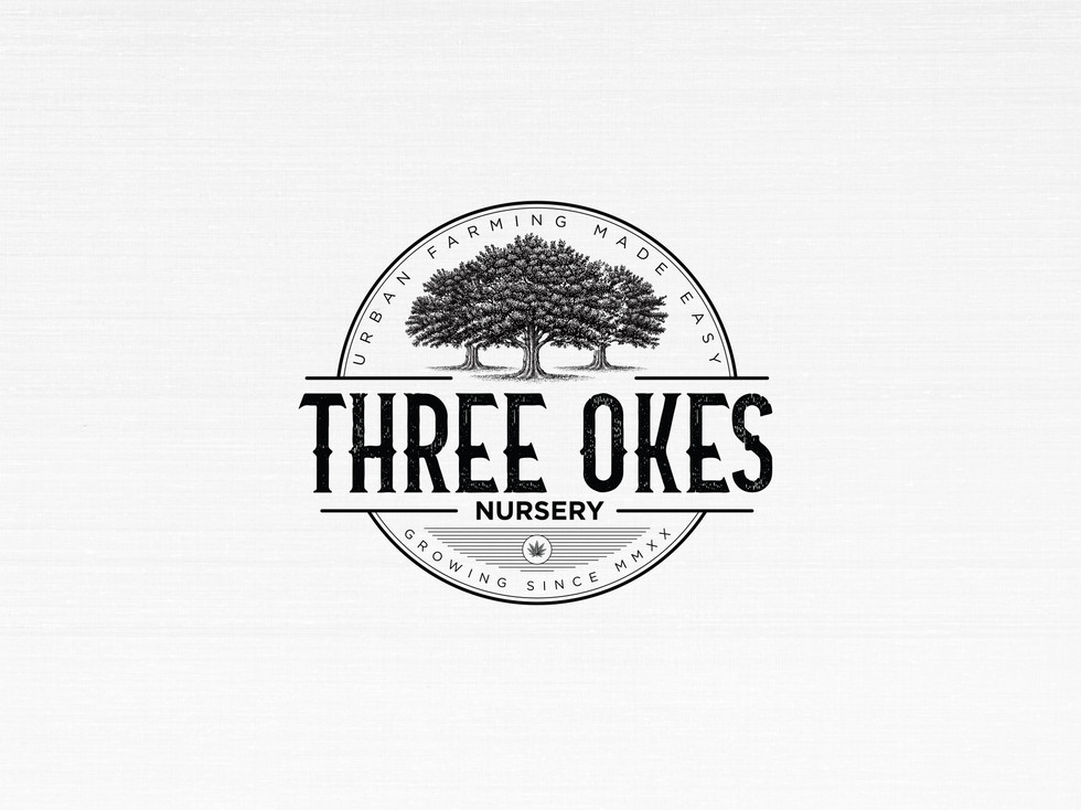 three_okes_thumbnail_2.jpg