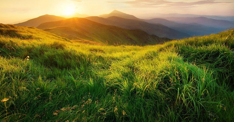 mycutis-mountainside.jpg