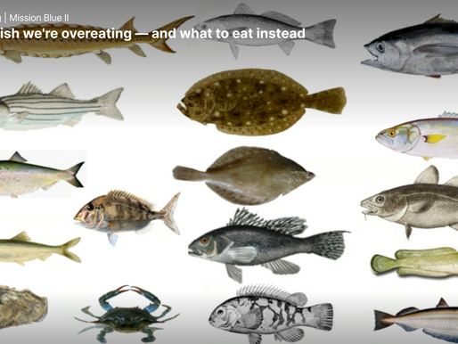 The four fish we're overeating -- and what to eat instead