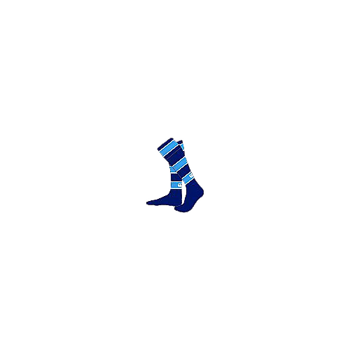 Alton School (COMPULSORY) Sports Sock