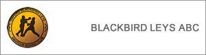 blackbird_button.png