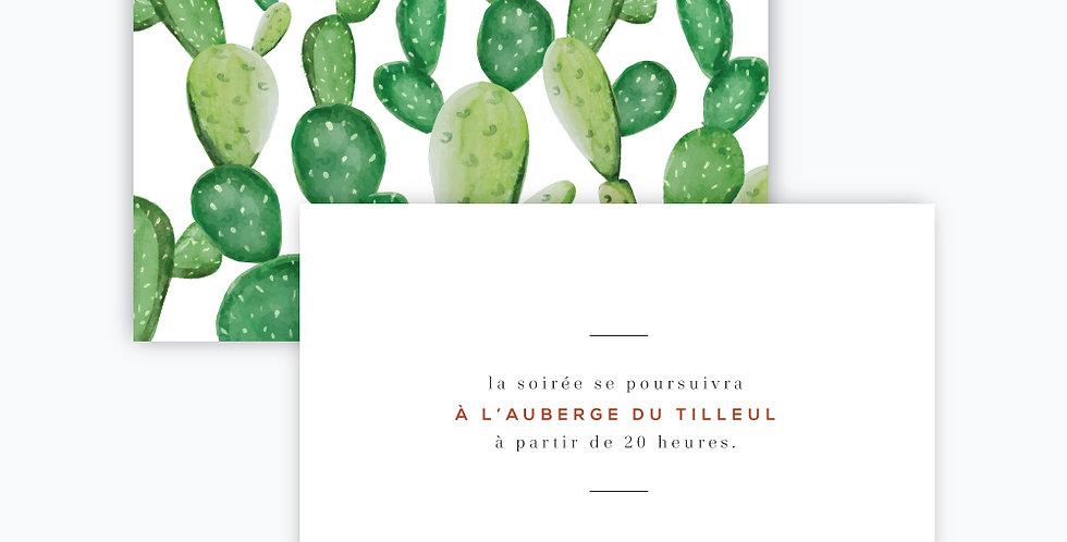 Carton soirée - Terra Cactus