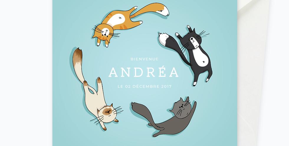 Faire-part - Petits chats