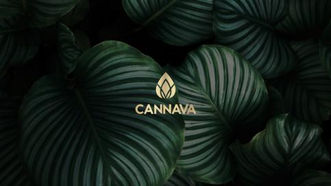 Cannava CBD Branding