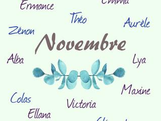 Les jolis bébés du Cabinet du mois de Novembre !