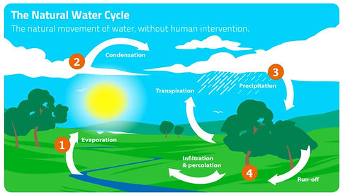 water cycle.jpg