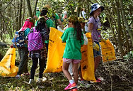Clean up Australia Day 3.JPG