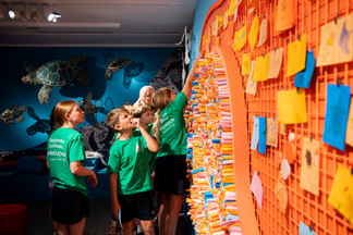 'Below the Tide Line', presented by the Children's Art Centre in conjunction with GOMA's 'Water' exhibition/ Photograph: Chloe Callistemon.