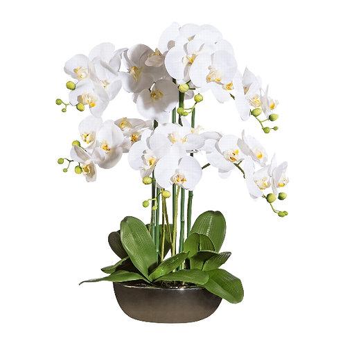 Orchideenarrangement M