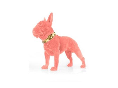 Dog Canela pink