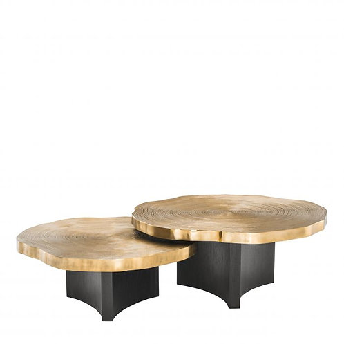 Coffee table THOUSAND OAKS set of 2